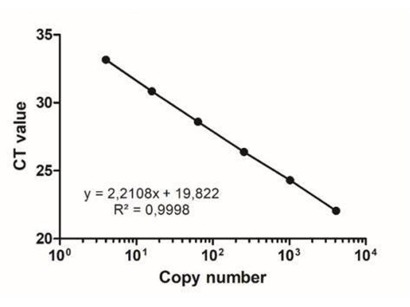 Image no. 1 for PhoenixDx® Mycoplasma Mix (ABIN6720774)